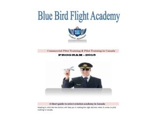 Commercial Pilot training & Pilot Training in Canada - BBFA
