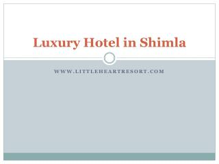 Luxury Hotel in Shimla