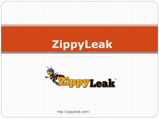 Plumbing Leak Detection | 800-699-8127 | ZippyLeak