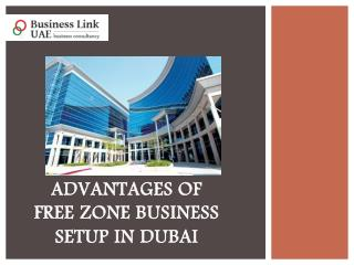 Advantages of Free Zone Business Setup in Dubai