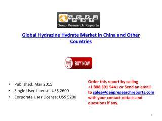 Hydrazine Hydrate new Project SWOT Analysis 2015