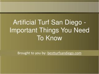 Artificial Turf San Diego - Important Things You Need To Kno
