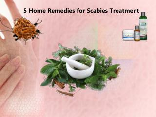 5 Home Remedies for Scabies Treatment