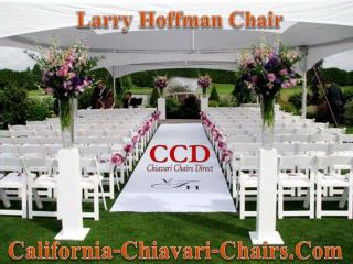 Larry Hoffman Chair