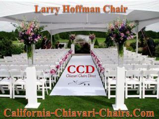 Larry Hoffman Chair