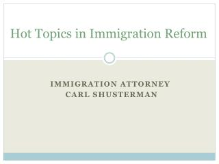 Hot Topics in Immigration Reform