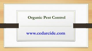CedarCide Organic Pest Control Products For Home and Pets