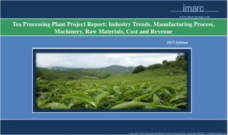 Global Tea Processing Plant Project Report