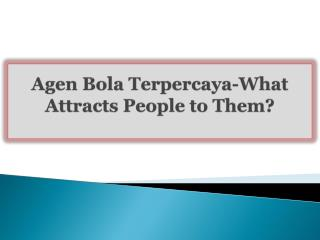 Agen Bola Terpercaya-What Attracts People to Them?