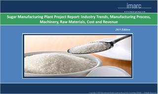 Sugar Manufacturing Plant | Cost, Production