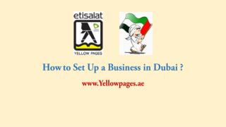 How to Set Up a Business in Dubai ?