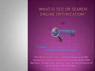 What is seo or search engine optimization