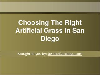 Choosing The Right Artificial Grass In San Diego