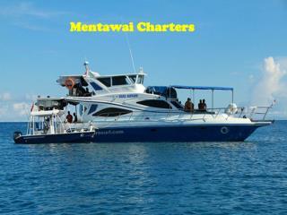 Mentawai Charters