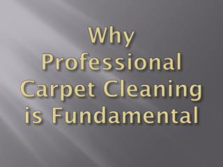 Why Professional Carpet Cleaning is Fundamental