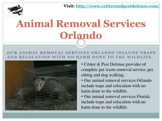 #Bed Bug Control Orlando