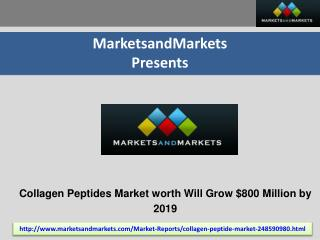 Collagen Peptides Market by Source, Application - 2019