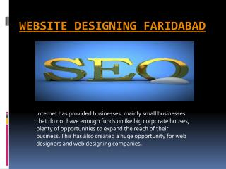 faridabad Web Design