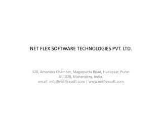 Net Flex Software Technologies PVT. LTD.