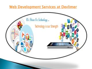 Web Development Services at Devlimer
