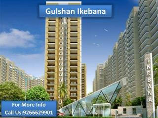 Gulshan Ikebana Noida, Sector 143   Gulshan Ikebana -@926662