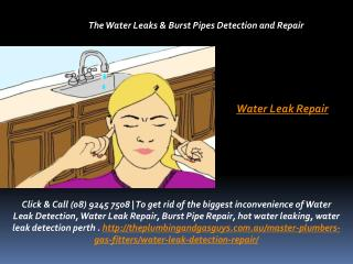 Water Leak Repair
