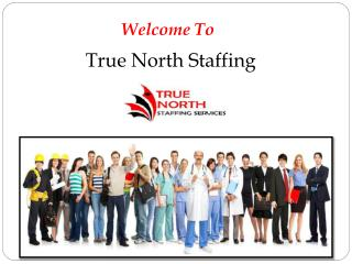 Employment Staffing Agency in Toronto, Canada