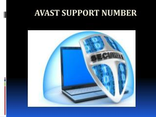 Avast Support Number 800-832-1504
