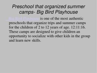 Big Bird Playhouse