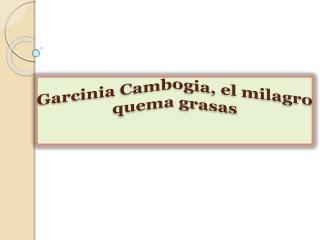 Garcinia Cambogia, el milagro quema grasas