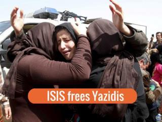 ISIS frees Yazidis