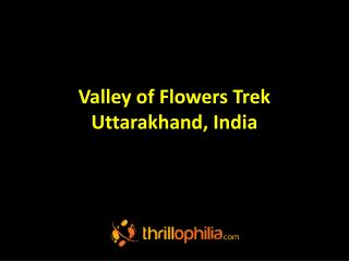 Valley of Flowers Trek Uttarakhand, India