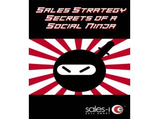 Sales Strategy Secrets of a Social Ninja