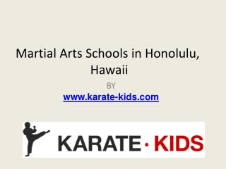 Martial Arts Schools in Honolulu,Hawaii