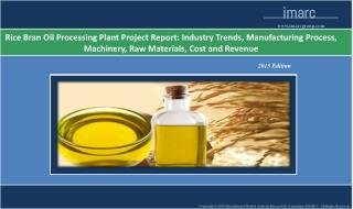 Rice Bran Oil Processing Plant | Cost, Production