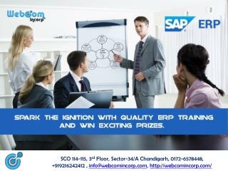 ERP/SAP Training Institute in Chandigarh