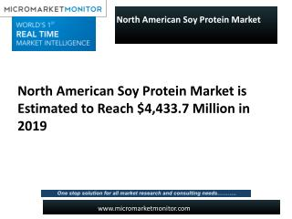 North American Soy Protein Market