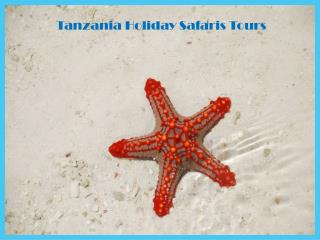 Tanzania Holiday Safaris Tours