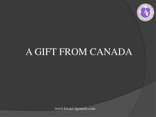 A Gift From Canada