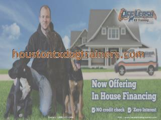 Dog Training Houston