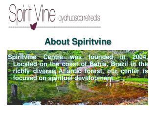 Ayahuasca retreat center in Brazil at SpiritVine