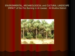 ENVIRONMENTAL, ARCHAEOLOGICAL and CULTURAL LANDSCAPE IMPACT of the Fire Burning in Al-rowase - Al Khukha District