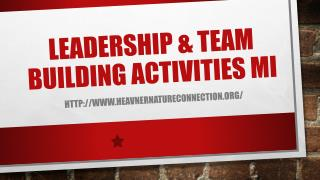 Leadership & Team Building Activities MI