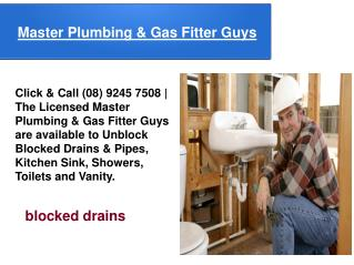 Master Plumbing & Gas Fitter Guys