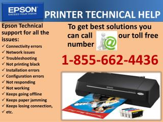 (1)8556624436 Epson Printer Technical Help--Printer Not Resp