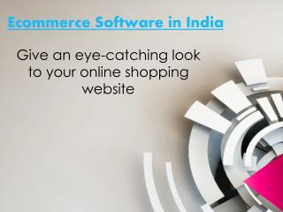 About Ecommerce Software