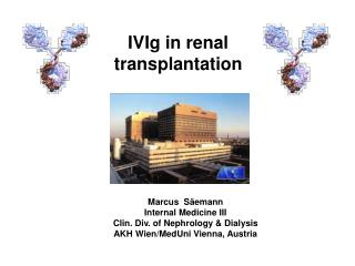 IVIg in renal transplantation