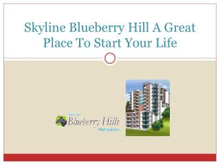 Skyline Blueberry Hill A Great Place To Start Your Life