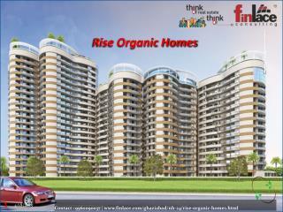 Rise Organic Homes