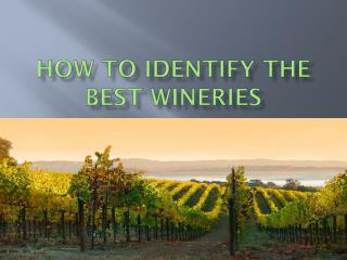 How to Identify the Best Wineries